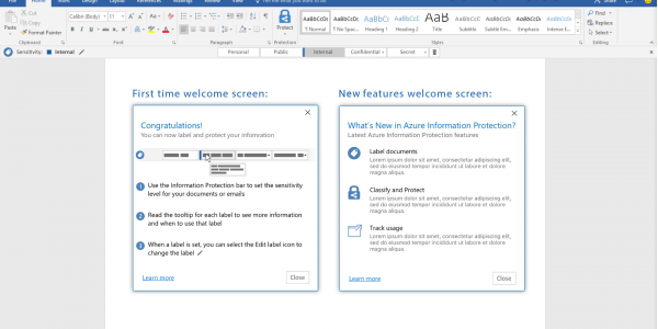 Microsoft Office Information Protection
