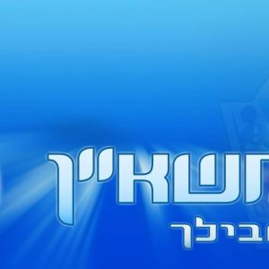 Branding for IDF's HR portal